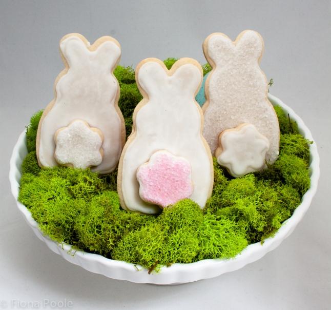 bunnies-1