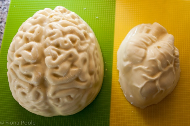 brain heart mould-2