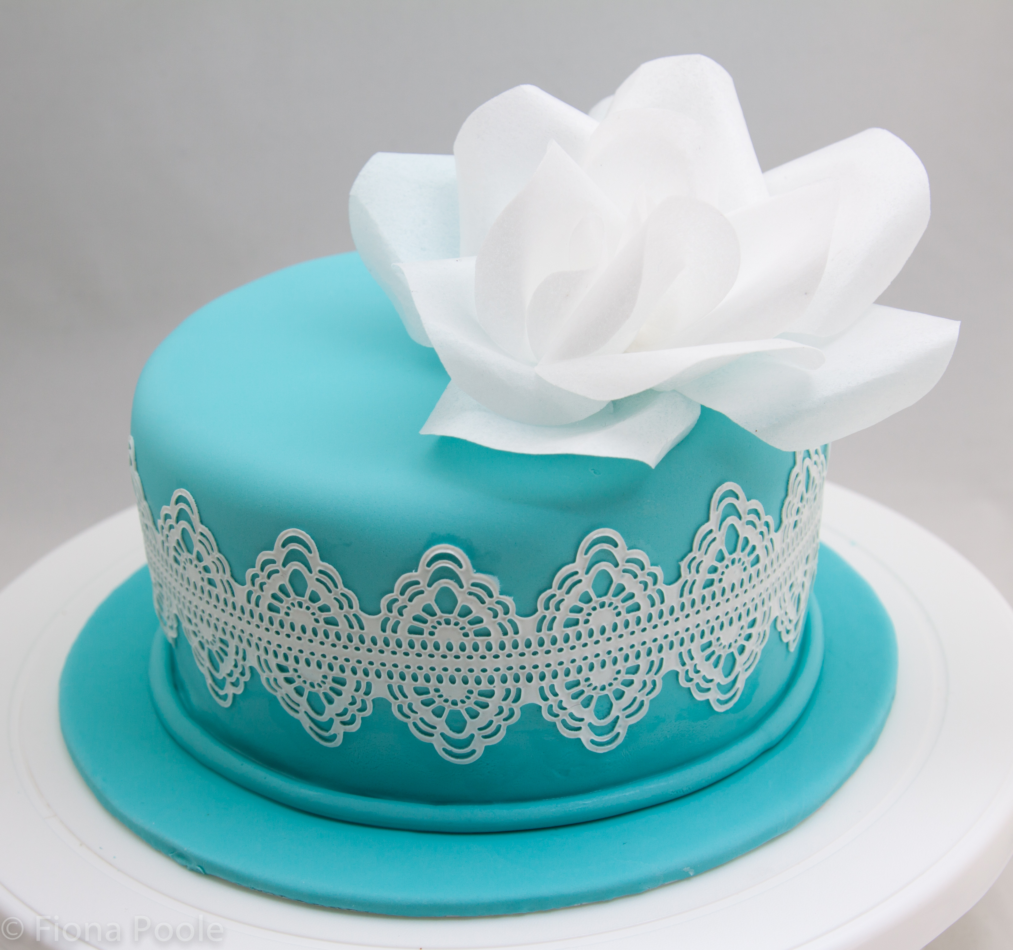 Cake Lace Amp Wafer Paper Fiona Poole